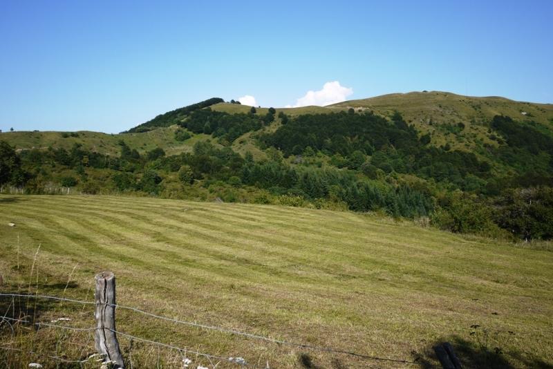 Monte Colombo Zum Zeri Estate 2011